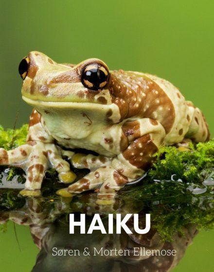 Haikua af Søren og Morten Ellemose